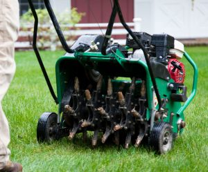 Deep Core Aeration Services