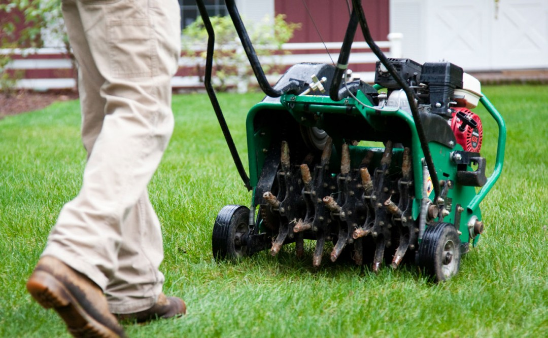 Core Aeration Packages